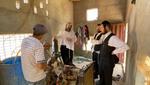 A Visit in the Arba Minim Field by Schwartz Esrogim for Yom Tov Sukkahs