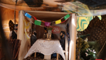 Beyond the Abode: How A Sukkah in Boro Park Upholds its 40-year Tradition of Inspiring its Guests