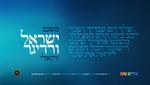 Yisroel Werdyger - Moshcheini - Acapella